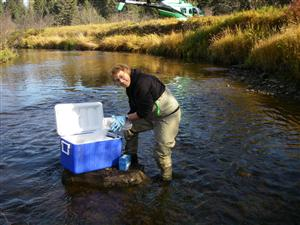 Water Quality Indicators: Temperature and Dissolved Oxygen