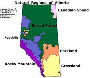 Boreal Forest Zones Regional Aquatics Monitoring Program Ramp
